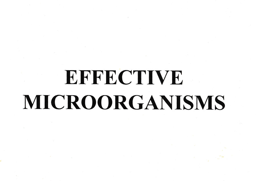 Efective-microorganisms