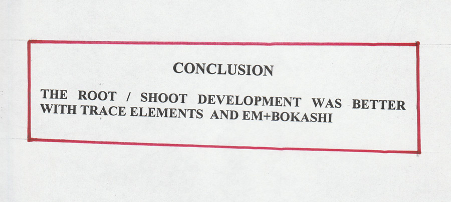conclusions_3