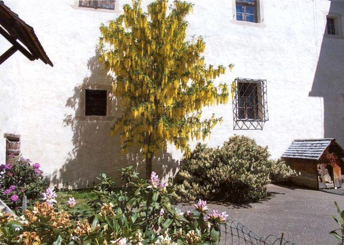 Flores e plantas no pátio interno. Gerhard, irmão caçula de Ana Maria Primavesi, é um profundo amante da natureza.