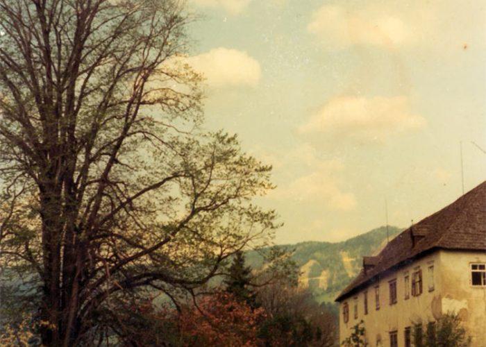 Castelo de Pichlhofen e ao fundo, os Alpes.