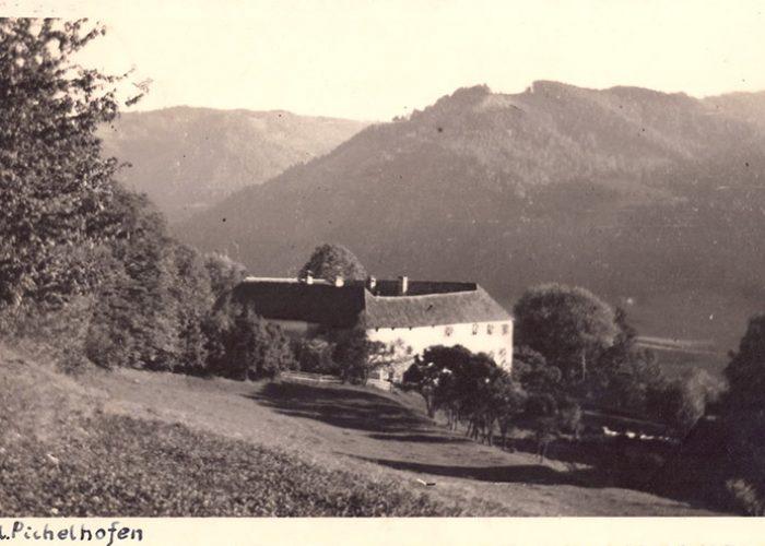 Fundos de Pichlhofen. À direita o fundo do vale onde passa o rio Mur. A propriedade vai além do vale, do outro lado do rio.