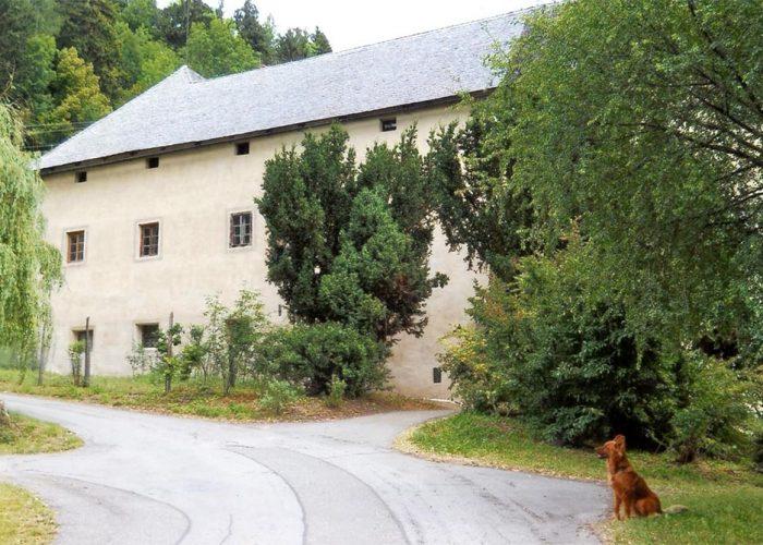 Outra lateral do castelo (esquerda de quem olha de frente). O cachorro Iron olha para a estrada que dá acesso à entrada.