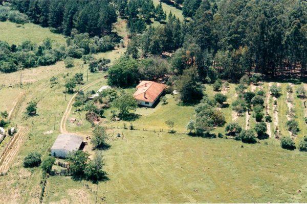 Vista de cima da casa de Ana Primavesi em Itaí, já com o pomar (direita da casa de telhado de barro) e os eucaliptos plantados como quebra-ventos ao fundo.
