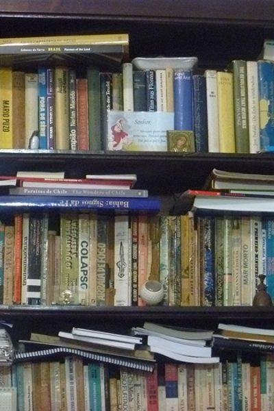 Detalhe da estante de livros da sala.
