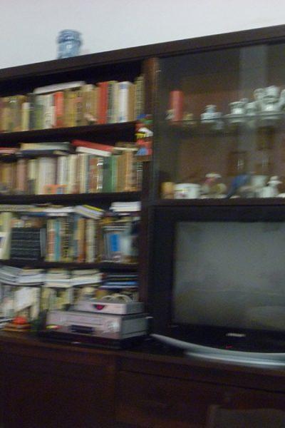 Estante de livros e a televisão, que Ana raramente ligava. Ela assistia aos jornais ocasionalmente. Os livros se acumulavam pois a biblioteca já estava repleta deles.